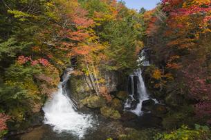 紅葉する竜頭の滝の写真素材 [FYI04798105]