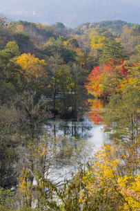 中瀬沼展望台からの眺めの写真素材 [FYI04798121]