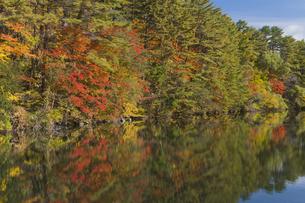 秋の五色沼の写真素材 [FYI04798122]