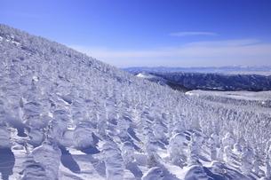 蔵王樹氷の写真素材 [FYI04798215]