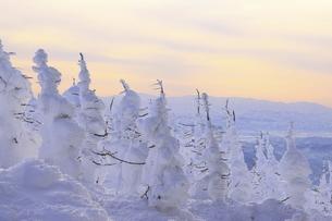 蔵王樹氷の写真素材 [FYI04798242]