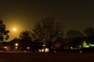 月 二の丸広場夜景風景  城あかり(熊本城)の写真素材 [FYI04798291]