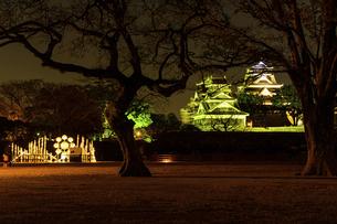 城 美しい夜空を背景にライトアップに輝く名城(熊本城) 城あかりの写真素材 [FYI04798298]