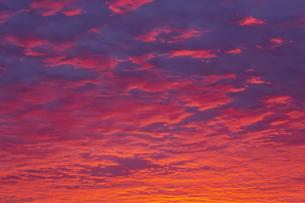 真っ赤な朝焼けの空の写真素材 [FYI04798443]
