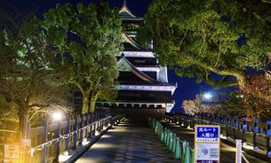 美しい夜空を背景に名城風景(熊本城)(ライトアップ)の写真素材 [FYI04798520]