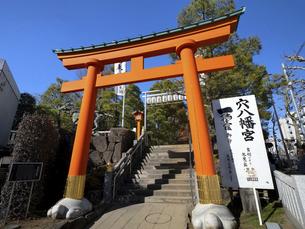 東京都 穴八幡宮の写真素材 [FYI04798623]