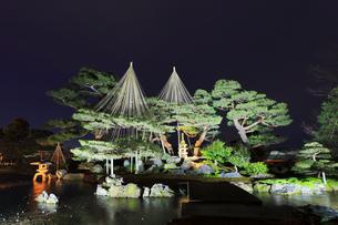 北陸金沢 兼六園ライトアップ冬の段の写真素材 [FYI04798980]