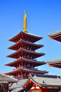 昭和48年(1973)に再建された浅草寺の五重塔。最上層には、スリランカのイスルムニヤ寺院から昭和41年(1966)に奉戴した仏舎利が納められているの写真素材 [FYI04799008]