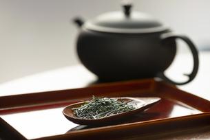 茶さじに盛られたお茶の写真素材 [FYI04799051]