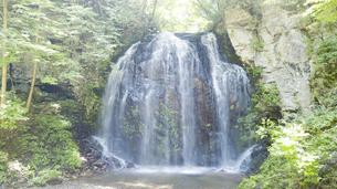 夏の森 みずみずしい早朝の森の中の滝の写真素材 [FYI04799174]