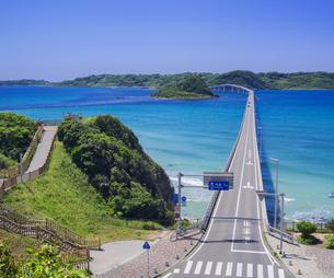 山口県 風景 海岸線と青空  (角島と角島大橋)の写真素材 [FYI04799346]