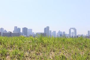 大阪のビル群と河川敷の写真素材 [FYI04799515]