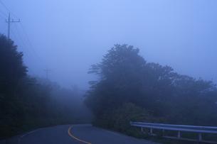 霧の道路の写真素材 [FYI04799528]