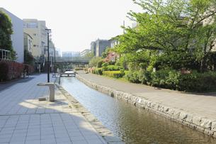 古石場川親水公園の写真素材 [FYI04799721]