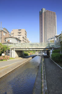 古石場川親水公園の写真素材 [FYI04799722]