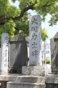 富岡八幡宮 大関力士碑の写真素材 [FYI04799737]