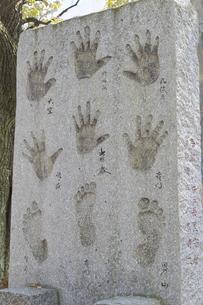富岡八幡宮 巨人力士手形足形碑の写真素材 [FYI04799738]