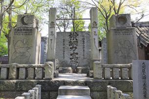 富岡八幡宮 横綱力士碑 陣幕不知火顕彰碑の写真素材 [FYI04799739]