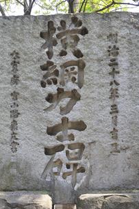 富岡八幡宮 横綱力士碑の写真素材 [FYI04799740]