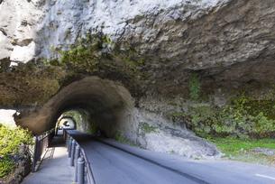 秋の耶馬渓 青の洞門の写真素材 [FYI04799792]