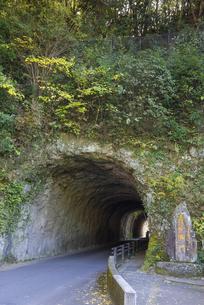 秋の耶馬渓 青の洞門の写真素材 [FYI04799793]