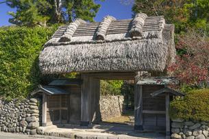 入来麓 茅葺門の写真素材 [FYI04799811]