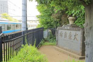 大森貝塚遺跡庭園の大森貝塚の碑と京浜東北線の写真素材 [FYI04800290]