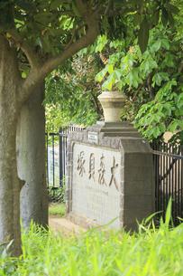 大森貝塚遺跡庭園の大森貝塚の碑の写真素材 [FYI04800291]