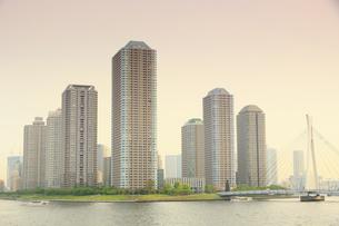 佃島タワーマンションの写真素材 [FYI04800293]