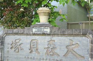 大森貝塚遺跡庭園の大森貝塚の碑の写真素材 [FYI04800346]