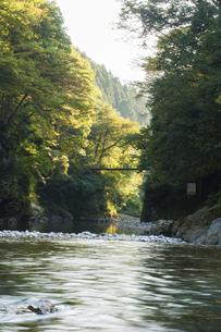 多摩川の写真素材 [FYI04800365]