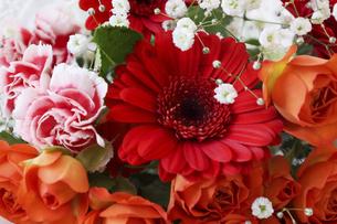 様々な花のブーケのクローズアップの写真素材 [FYI04800450]