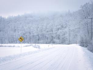 冬の道の写真素材 [FYI04800469]