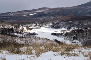 真冬の白樺湖 湖面全面結氷 白樺高原と蓼科山 八ヶ岳の写真素材 [FYI04800491]