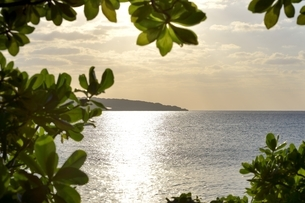 宮古島の海の写真素材 [FYI04800698]