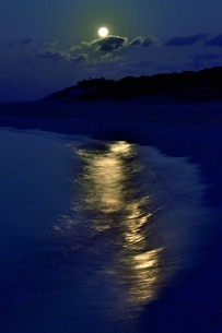 宮古島の海の写真素材 [FYI04800831]