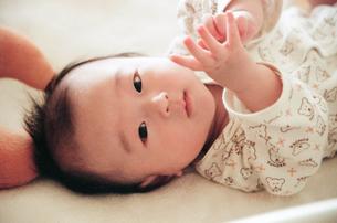 赤ちゃんの写真素材 [FYI04800879]