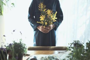黄色の花のミモザを持つ女性の写真素材 [FYI04801113]