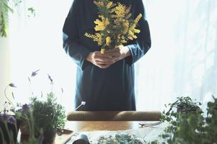 黄色の花のミモザを持つ女性の写真素材 [FYI04801114]