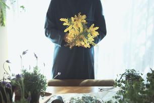 黄色の花のミモザを持つ女性の写真素材 [FYI04801116]