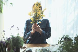 黄色の花のミモザを持つ女性の写真素材 [FYI04801117]