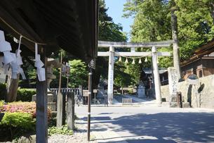 諏訪大社 下社春宮 昼下がりの夏景色の写真素材 [FYI04801257]