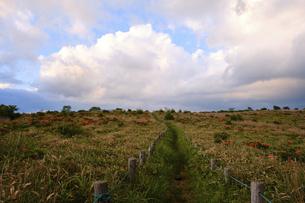 高ボッチ高原の夕暮れの景色 長野県塩尻市の写真素材 [FYI04801267]