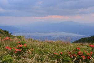 高ボッチ山の山頂から眺める初夏の諏訪湖の全景と諏訪市、下諏訪町の景色の写真素材 [FYI04801268]