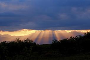 高ボッチ高原の夕暮れの景色 長野県塩尻市の写真素材 [FYI04801269]