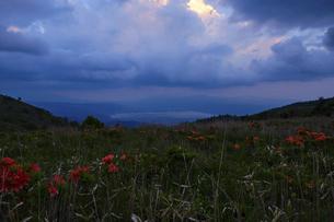 高ボッチ高原の夕暮れの景色 長野県塩尻市の写真素材 [FYI04801271]