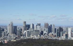 東京都庁と新宿高層ビルの写真素材 [FYI04801342]
