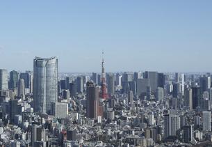 東京タワーと都心のビル群の写真素材 [FYI04801343]