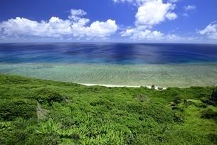 与那国島の海の写真素材 [FYI04801359]