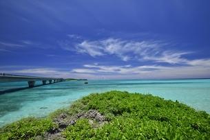 宮古島の海の写真素材 [FYI04801381]